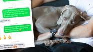 """Ontslagen door ziektebriefje voor zieke hond: """"Bezorgdheid was zo groot dat ik niet kon werken"""""""