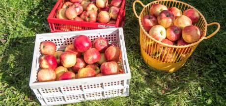Kapelle schenkt appels aan voedselbank