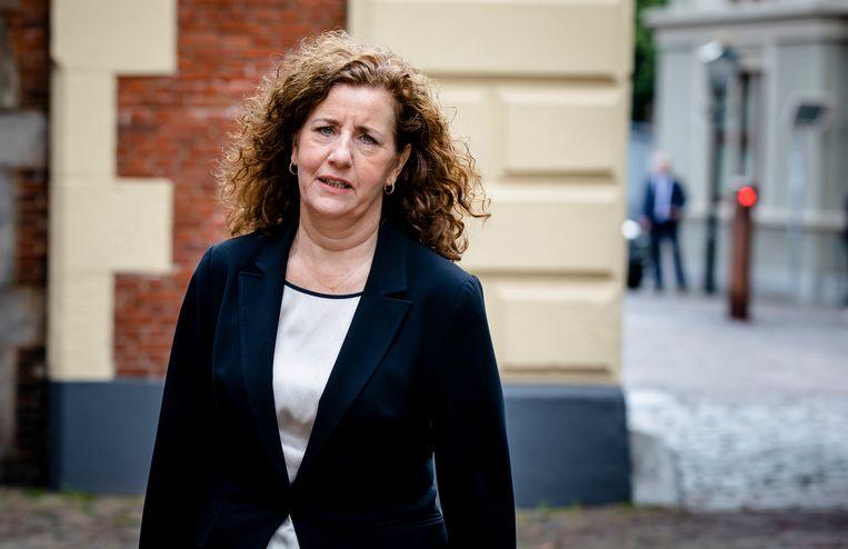 Cultuurminister Ingrid van Engelshoven (D66) wil 8,6 miljoen euro bezuinigen op het Fonds Podiumkunsten.  Beeld ANP