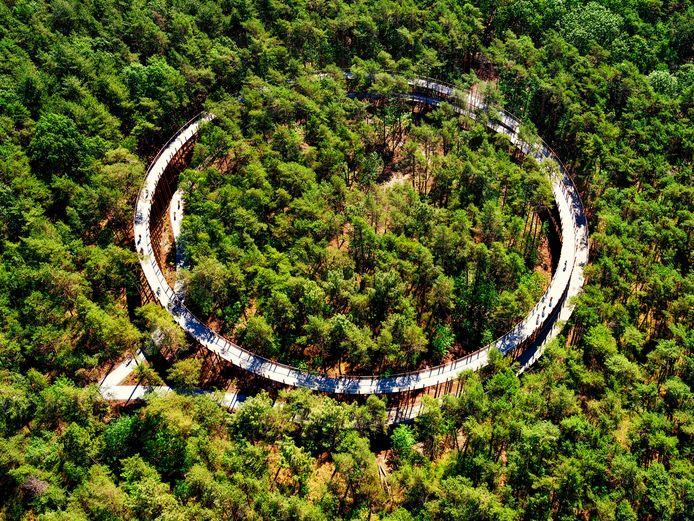 Fietsen door de bomen in Hechtel-Eksel (B)