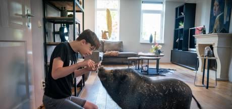 Hangbuikzwijn Spekkie is het favoriete huisdier van Bjarn (11): 'Hij knort veel en snuffelt altijd rond'