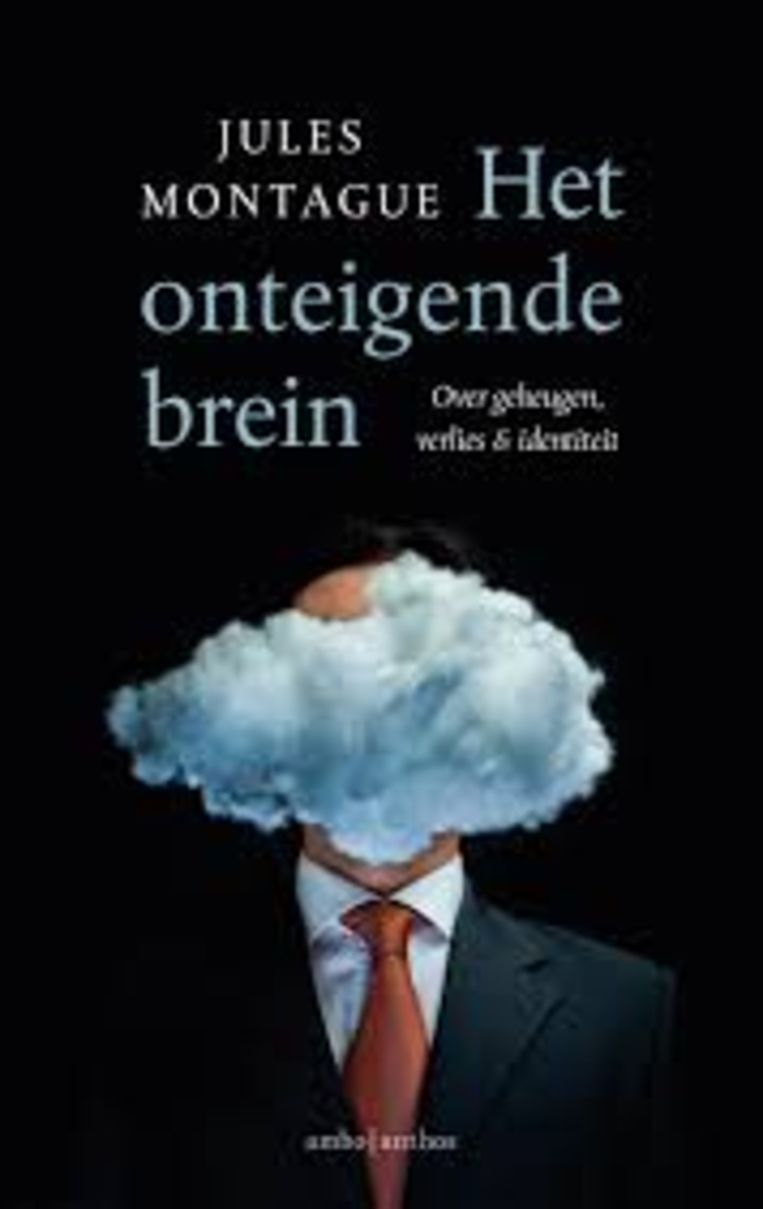 Jules Montague, Het onteigende brein. Over geheugen, verlies & identiteit. Ambo Anthos € 21,99. Beeld rv