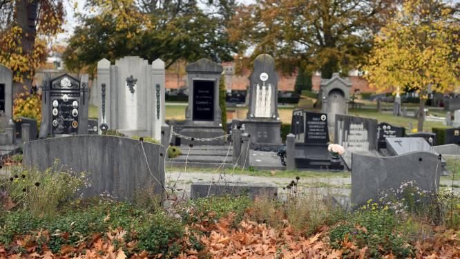 Opvallend veel herfstbladeren op de Stadsbegraafplaats en dat heeft een goede reden…