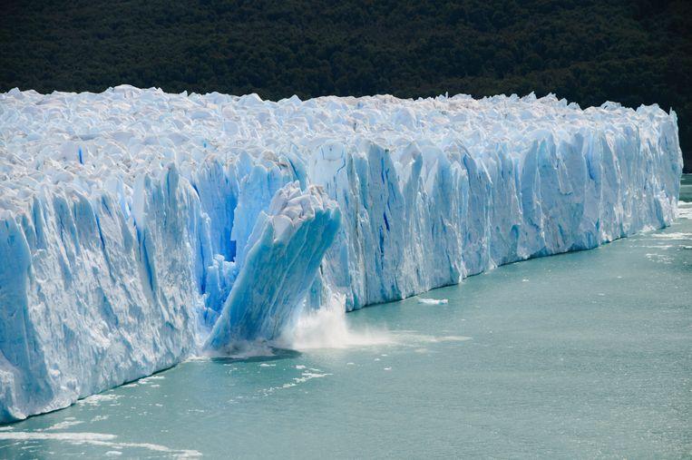 'Behoud van biodiversiteit en leefbaarheid gaat niet samen met nog meer economische groei'. Beeld Getty Images/iStockphoto
