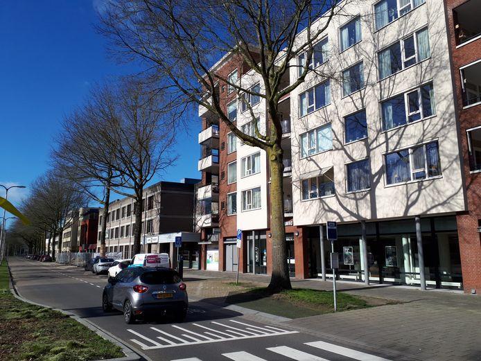 Bewoners van dit appartementencomplex krijgen hun zin. De twee grote moeraseiken voor hun deur worden gekapt en de gemeente draagt de helft van de kosten bij.