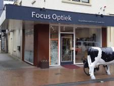 Drietal rooft in holst van de nacht partij brillen uit winkel in Velp