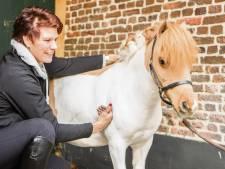 Antoinette leert eigenaren hoe ze hun paard of pony kunnen masseren in Holten: 'Het maakt me blij'