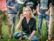 Bier lijkt het levenselixer van de jonge stadsmens