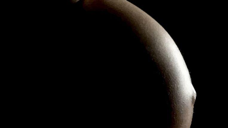 De buik van een zwangere vrouw (HH) Beeld