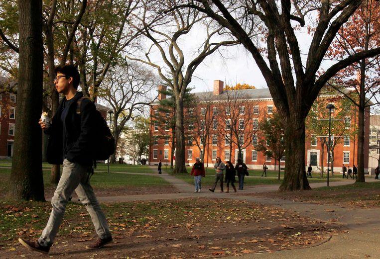 Een student op de campus van Harvard in Cambridge, Massachusetts.