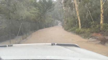 Bosbranden en zondvloed teisteren Australië