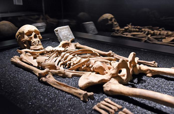 Het skelet van Vulferus, gestorven op 10 februari 1013.