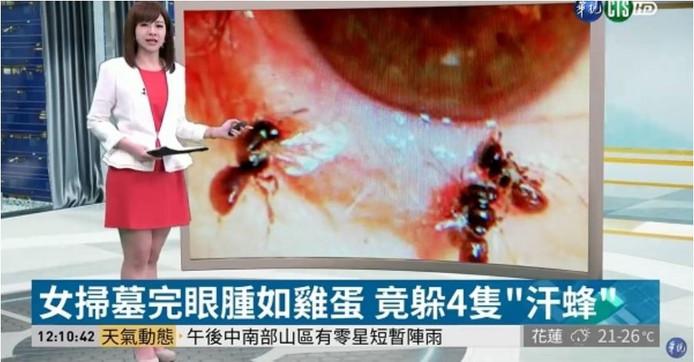 Het verhaal van He haalde het Taiwanese nieuws