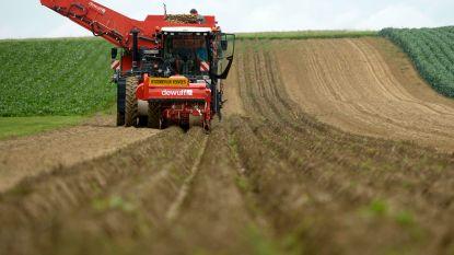 Kaprijke lanceert twee nieuwe adviesraden: landbouwraad en personen met beperking