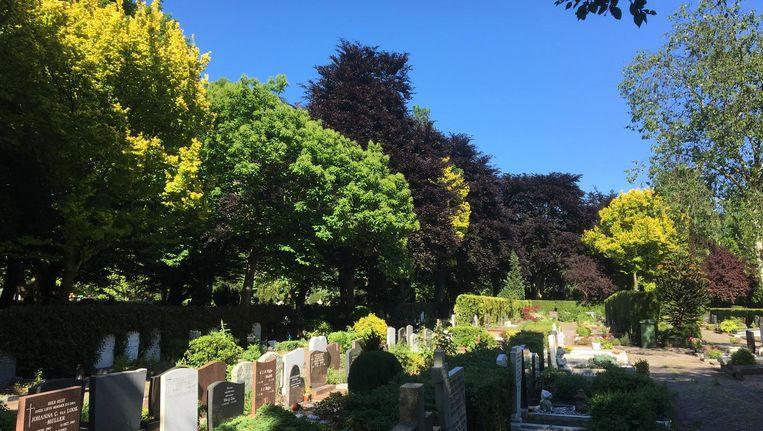 Onder andere Begraafplaats Buitenveldert is open voor publiek tijdens De Week van de Begraafplaats. Beeld Begraafplaats Buitenveldert