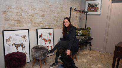 Hip Dog wil honden en paarden vooruit helpen