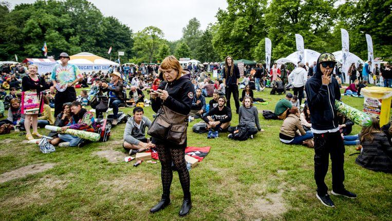 Juni 2015: Cannabis Bevrijdingsdag in het Flevopark in Amsterdam. Beeld anp