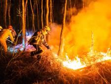 Dag en nacht strijden tegen de vlammen in verraderlijke Peel: 'De vraag is hoe lang je dit kan blijven volhouden'