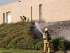 Bosjes bij sporthal Scherpenzeel in brand door vuurwerk