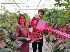 Opbrengst veiling eerste Kwanza-frambozen in Zaltbommel is voor SamenLoop voor Hoop Esch