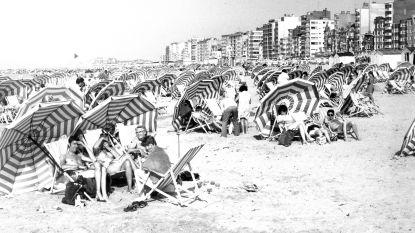 De zomer van 1976: toen de mussen van de daken vielen en auto's wassen en tuin besproeien voor het eerst verboden werd