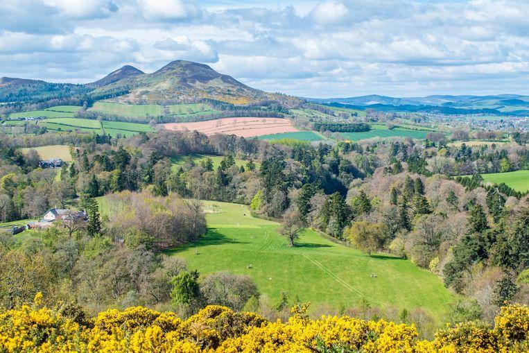 De Scottish Borders waar Scott zijn versie van Rob Roy verzon Beeld David Bronkhorst en Chantal van Wees