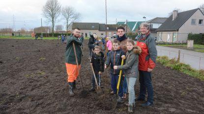 Havenbedrijf Waeslantnatie schenkt nieuw bos, leerlingen planten de bomen