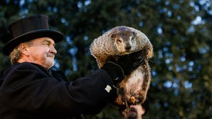 Phil de bosmarmot ziet zijn schaduw en voorspelt zo nog zes weken winterweer