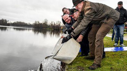 550 kilogram verse vis in Donkmeer