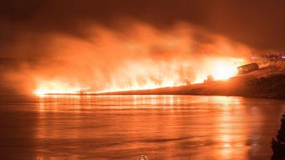 Australiërs op de vlucht voor natuurbrand