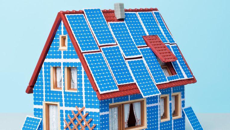 'We hebben tot dusver meer energie gestoken in de aanleg van het dak dan ervan af is gekomen' Beeld Lieke Janssen