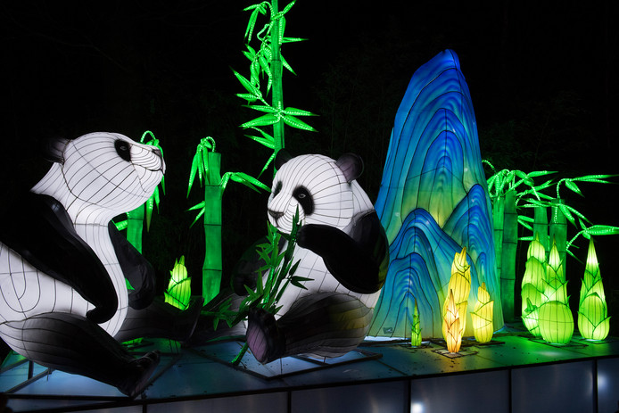 China Light Festival in Ouwehands Dierenpark.