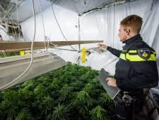 Staat eist 680.000 euro drugswinst terug van wietbaas met kwekerijen in onder andere Oss