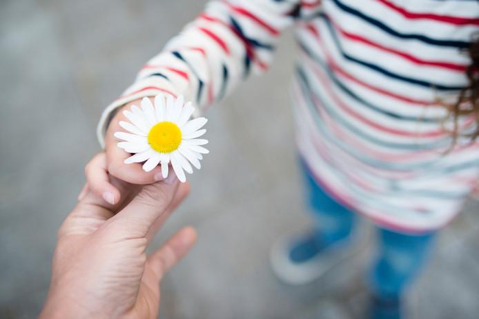 kind jeugdzorg bloem hulp jong jeugd stock