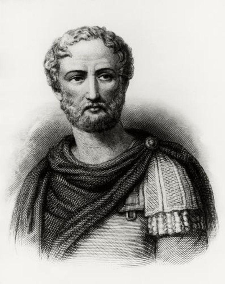 Plinyius de Jongere Beeld