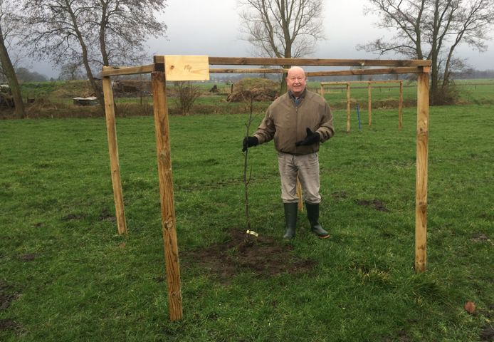 Een donateur plant trots een walnotenboom.