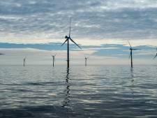 Rotterdam wil nog 28 windmolens rond de stad bouwen (en de rest komt voortaan in zee)