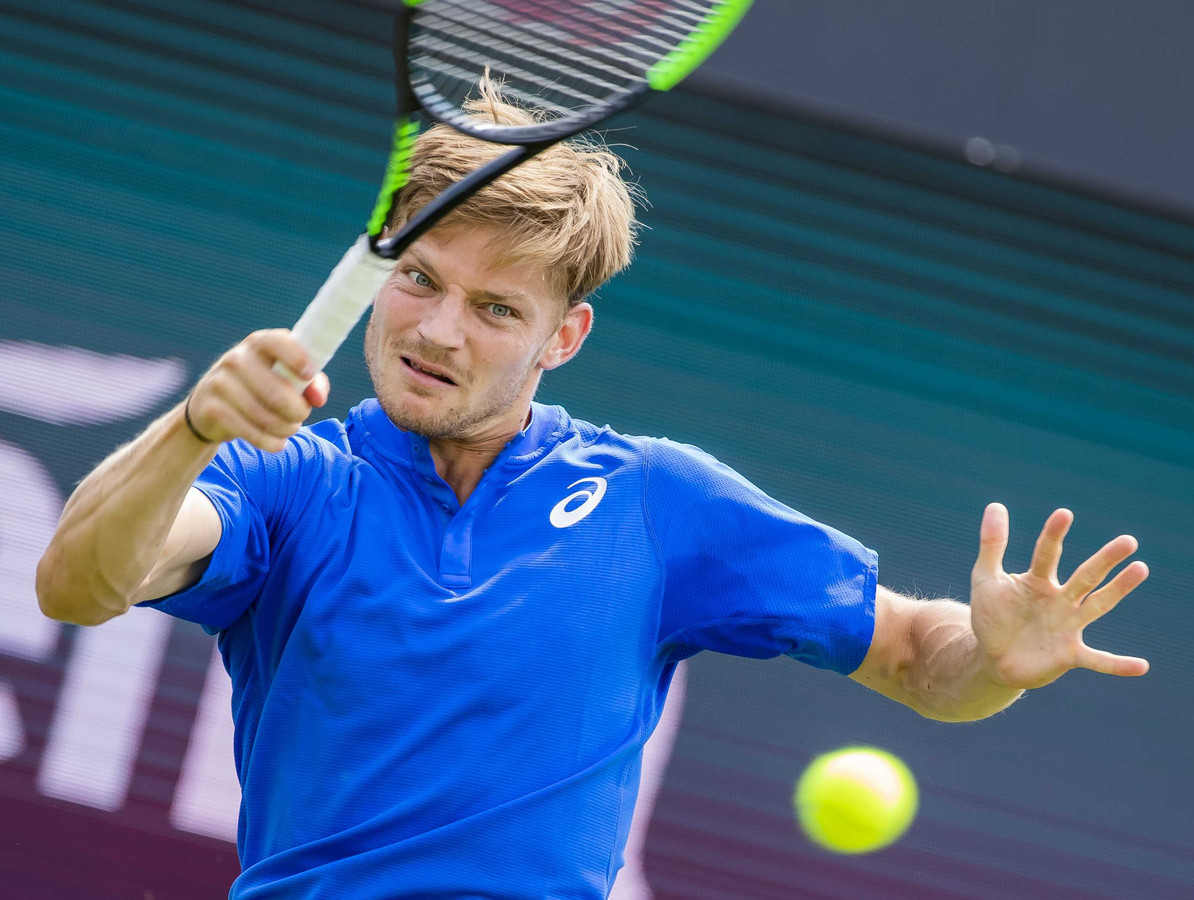 David Goffin confirme à Rosmalen.