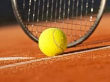Mierlose tennis- en hockeyclub misschien samen op één sportpark