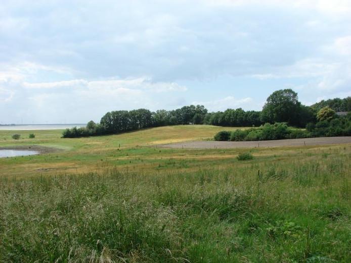De Brabantse Wal.