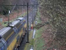 Vertraging op het spoor door omgevallen boom bij Oosterbeek voorbij