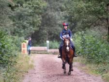 Niet alleen discipline van de paarden gevraagd tijdens oefencross in Den Ham