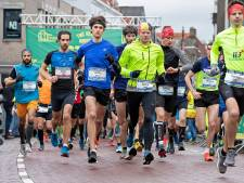 Vaste routepaaltjes