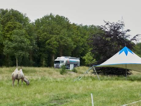 Circus Bolalou hoopt in september op voorstellingen in Laren en Deventer