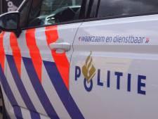 Man (25) vernielt tuinen met auto in Zevenbergen