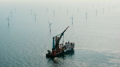 Nederland start onderzoek naar de effecten van onderwatergeluid op zeedieren