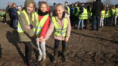 Kinderen planten nieuwe bomen in speelbos Zwijnaarde