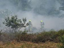 Heidebrand in vennengebied tussen Alverna en Overasselt onder controle