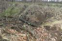 Het gat in de dijk waar de bever heeft huisgehouden.