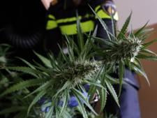 Voor 100.000 euro aan wiet in Amersfoortse woning gevonden; twee mannen aangehouden
